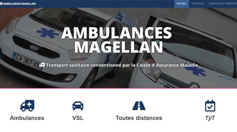 Recent work on Ambulances Magellan
