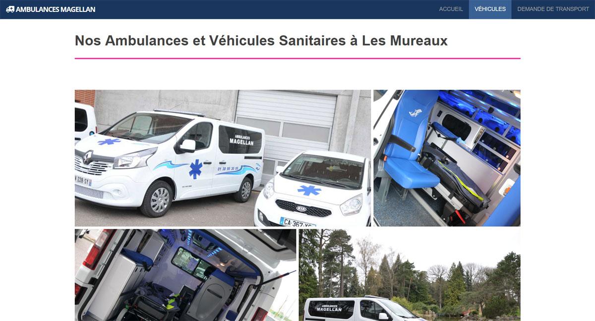 ambulances magellan screenshot two